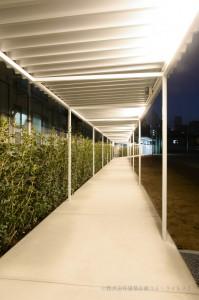 23.渡り廊下(夜)